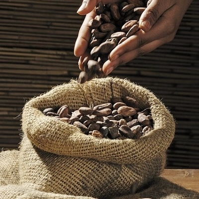 cocoa-beans (400x400)