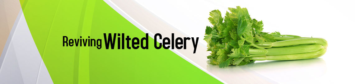 reviving-wilted-celery